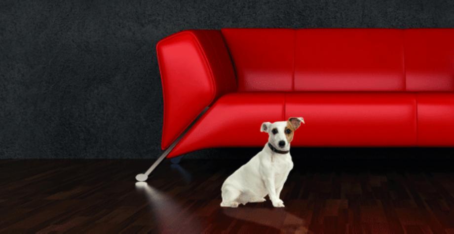 willkommen bei raumwelt wir gestalten wohnr ume. Black Bedroom Furniture Sets. Home Design Ideas